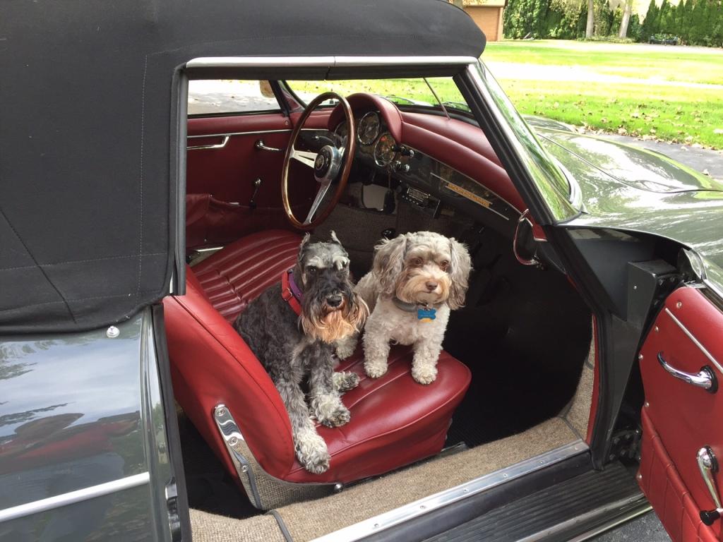 "Myrtle & Sadie say ""Let's Go!"" in Diane Burton's '61 T5 Roadster"